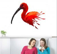 70% Off on Wall Sticker Starts from Rs. 66- Amazon
